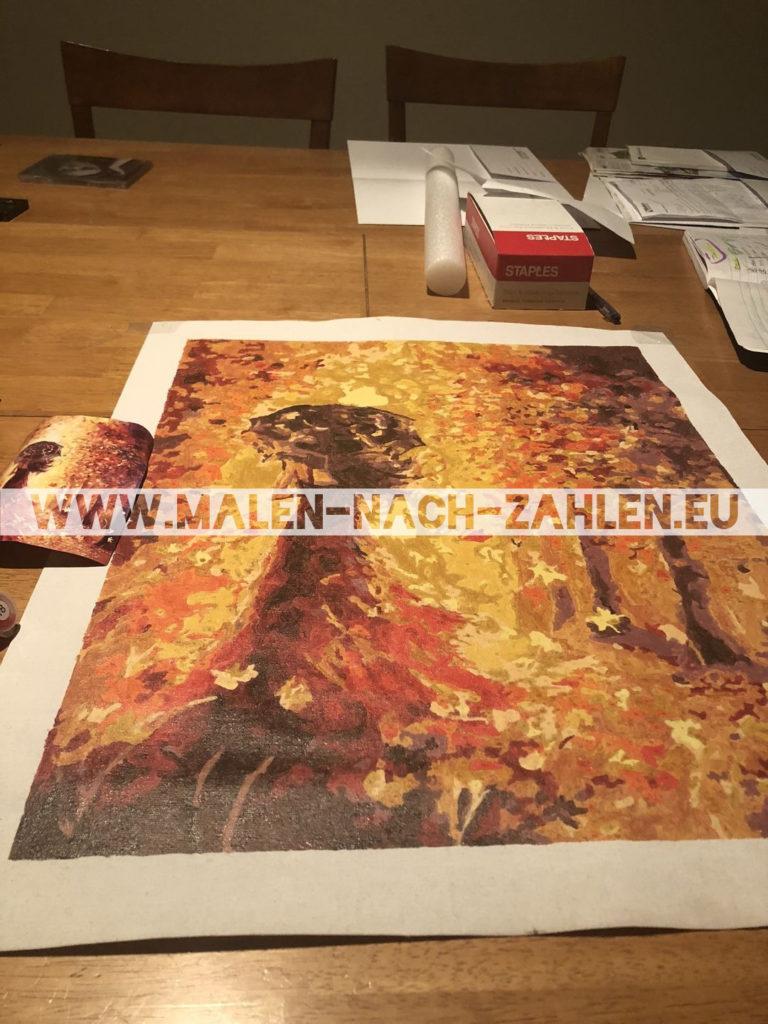 Malen nach Zahlen - Magische Frau photo review