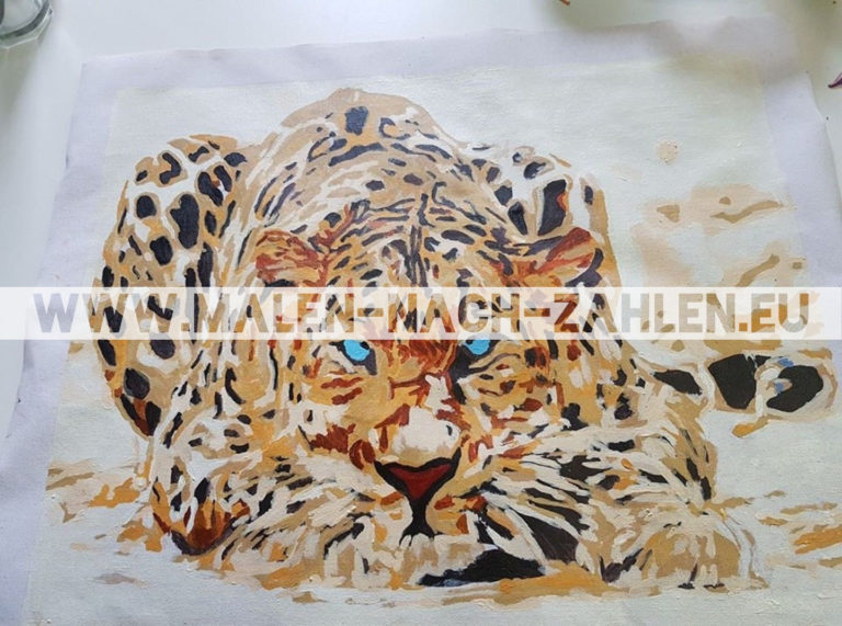 Malen nach Zahlen - Liegender Leopard photo review