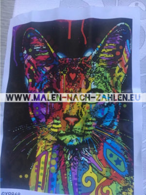 Malen nach Zahlen - Bunte Katze photo review