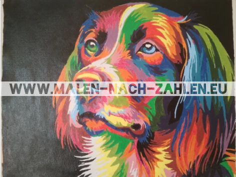 Malen nach Zahlen - Bunter Hund photo review